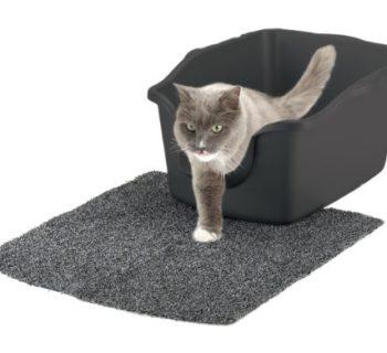 Best Large Cat Litter Box In 2018