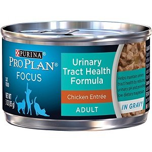 Purina Pro Plan Wet Cat Food, Focus, Adult Urinary Tract Health Formula Chicken Entrée