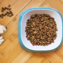 Best Grain Free Puppy Food