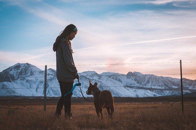When to Start Walking a Puppy
